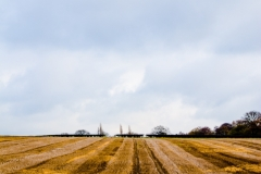 Ploughed field2