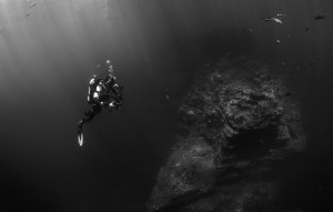 Diving in Black and White